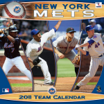 """Hysteria, Thy Name is """"Mets Coverage"""""""